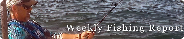 Weekly Fishing graphic